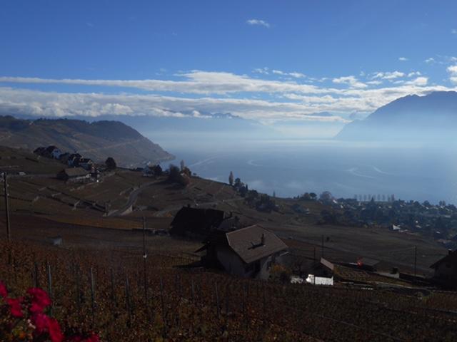 スイス 201511 121 (1)