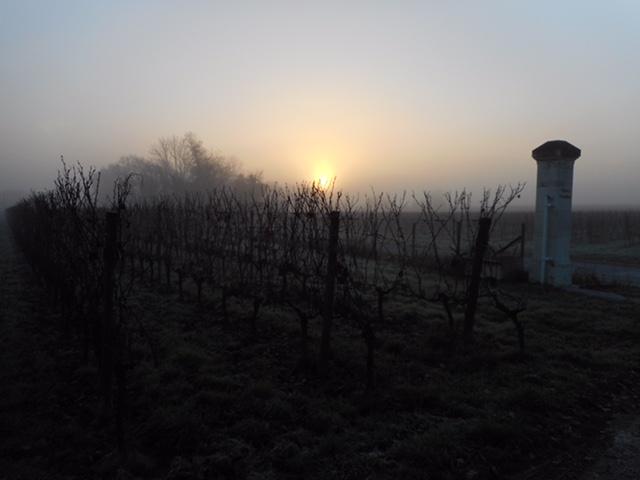 Bordeaux Rioja 105